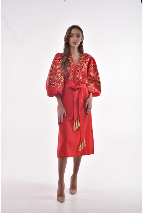 "Embroidered dress ""Znahidka""  red"
